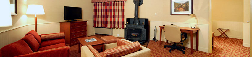 Luxury suite with wood-burning fireplace and spa bath.