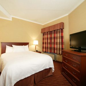 Suite with queen bed - Sault Ste. Marie motel