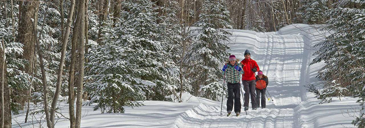 Cross Country Skiing in Sault Ste. Marie - Algoma's Water Tower Inn & Suites